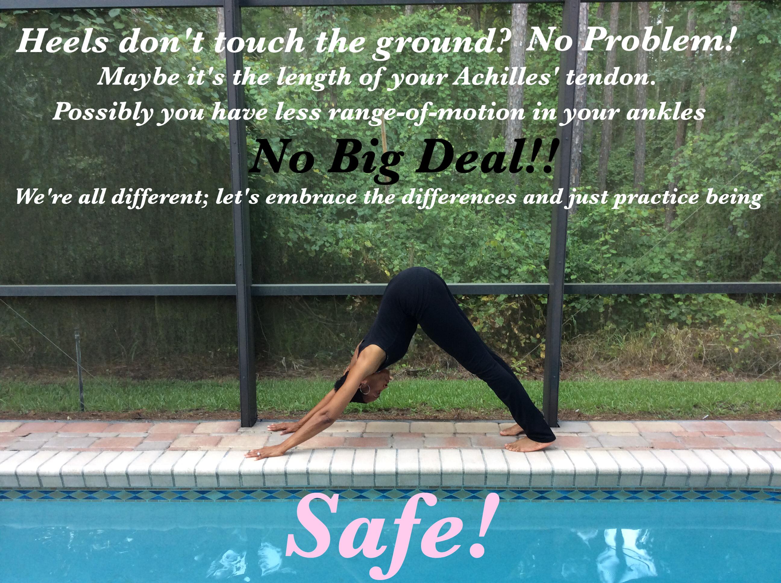 safe dog